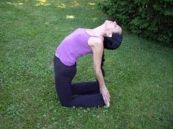 Hatha-Yoga_Dipada_2