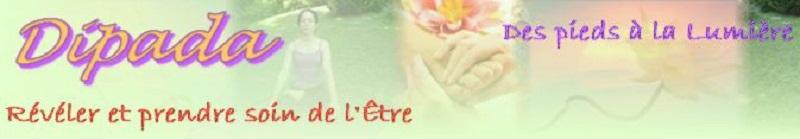 Bannière_Site_Dipada